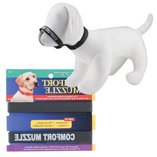 Coastal Comfort for Dogs Free Shipping