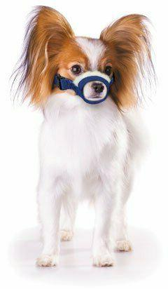 Four Flags Cozy Quick Muzzle, X-Small Blue