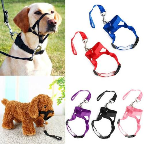 dog muzzle head mouth nose stop pulling